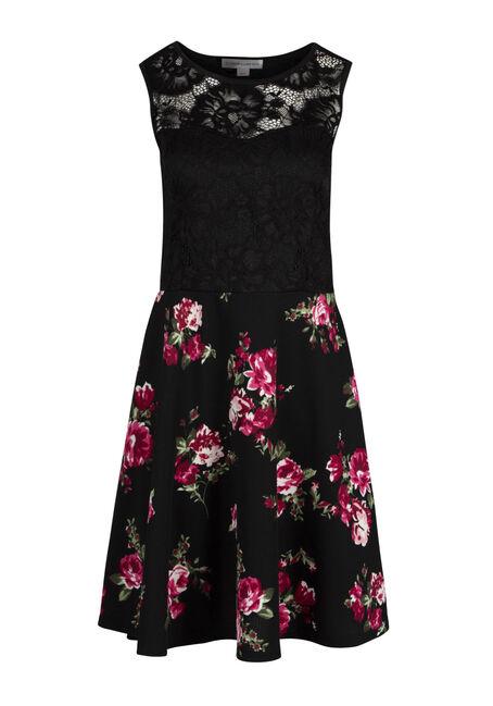 Ladies' Lace Skater Dress