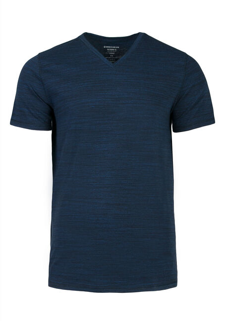 Men's Everyday V-neck Tee, ROYAL BLUE, hi-res