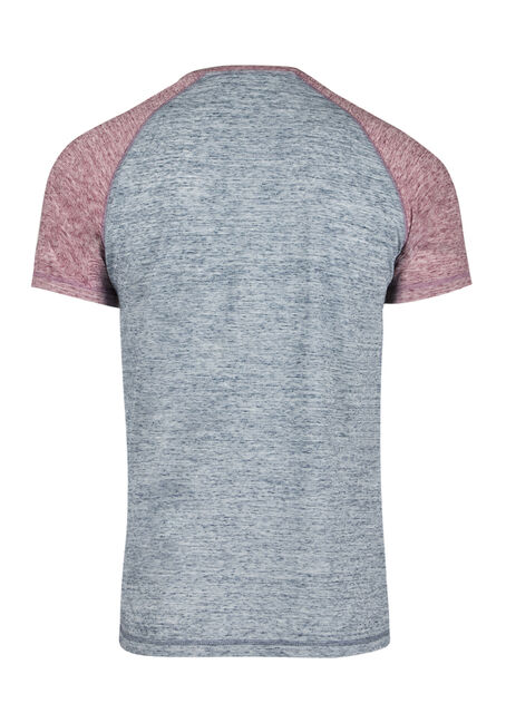 Men's Everyday Raglan Tee, RAISIN, hi-res