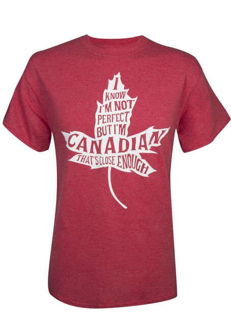Men's Not Perfect But Canadian Tee, RED, hi-res