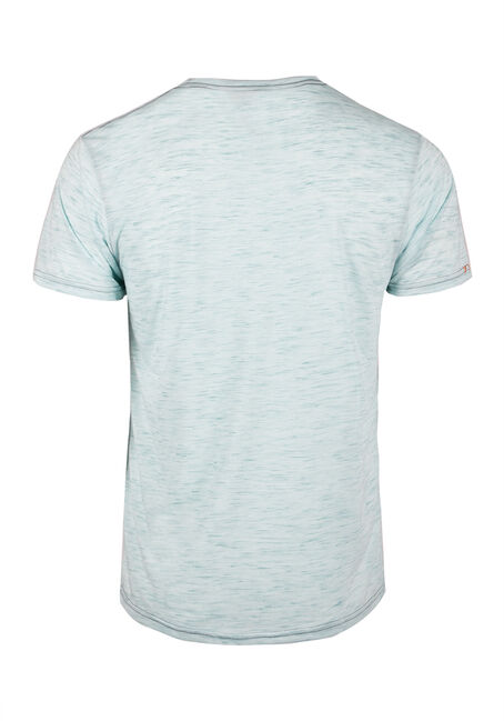 Men's Donkey Wash Tee, AQUA, hi-res