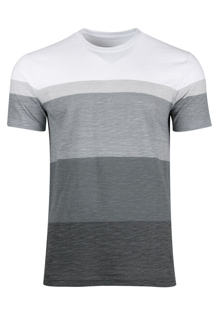 Men's Everyday Stripe Tee