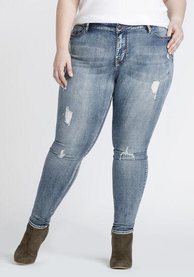Women's Plus Size Vintage Distressed Skinny Jeans, DENIM, hi-res