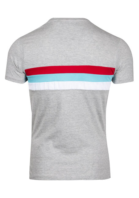 Men's Stripe Crew Neck Tee, HEATHER GREY, hi-res