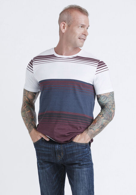 Men's Everyday Stripe Tee, VINEYARD, hi-res