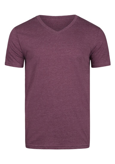 Men's Everyday V-Neck Tee, PINOT, hi-res