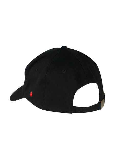 Men's True North Baseball Hat, BLACK, hi-res