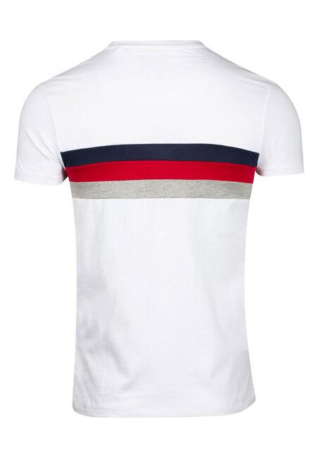 Men's Stripe Crew Neck Tee, WHITE, hi-res