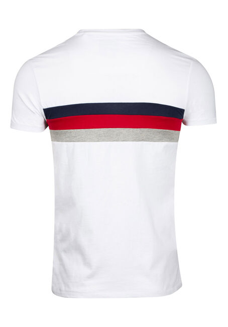 Men's Stripe Crew Neck Tee, WHITE, hi-res