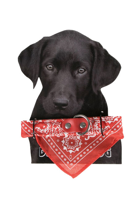 Bandana Pet Collar, RED, hi-res