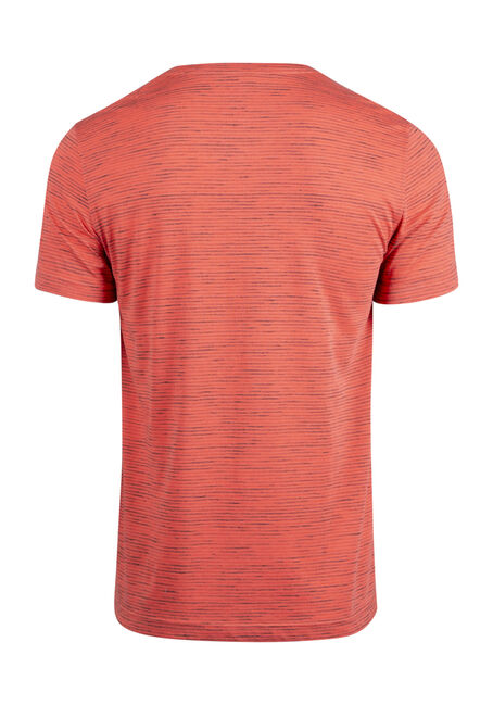 Men's Everyday V-Neck Tee, TUCSON CORAL, hi-res