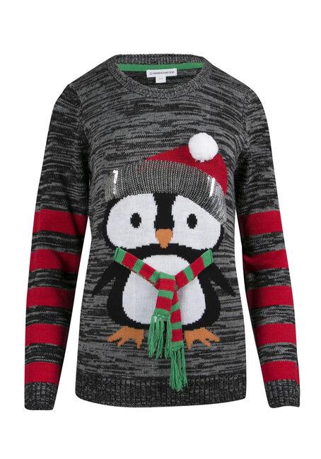 Ladies' Penguin Sweater