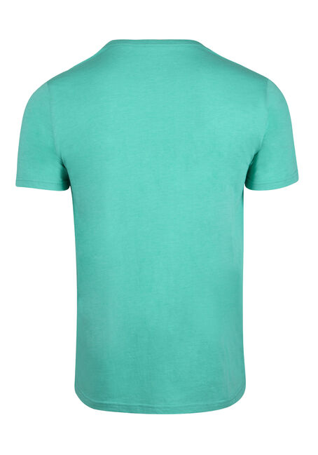 Men's Everyday V-Neck Tee, AQUA GREEN, hi-res