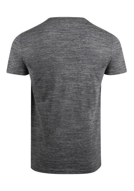 Men's Everyday V-Neck Tee, LIGHT GREY, hi-res