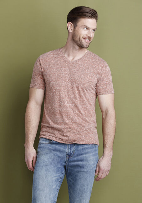 Men's Everyday V-Neck Tee, ARABIAN SPICE, hi-res