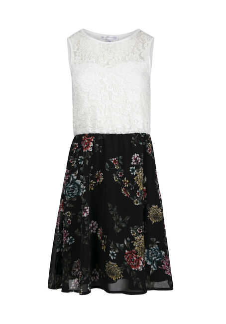 Women's Lace Floral Skater Dress