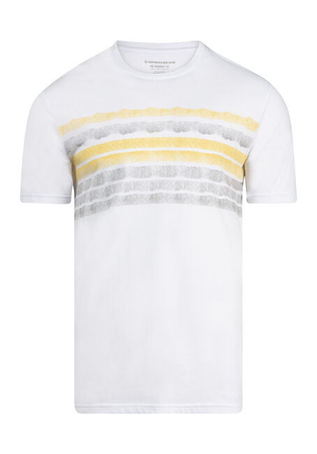Men's Painted Stripe Everyday Crew Neck Tee