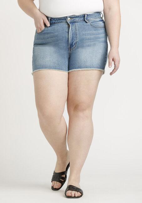 Women's Plus High Rise Vintage Frayed Hem Short