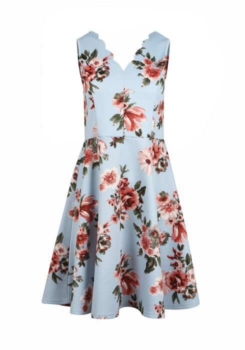 Women's Floral Fit & Flare Dress, BLUE, hi-res