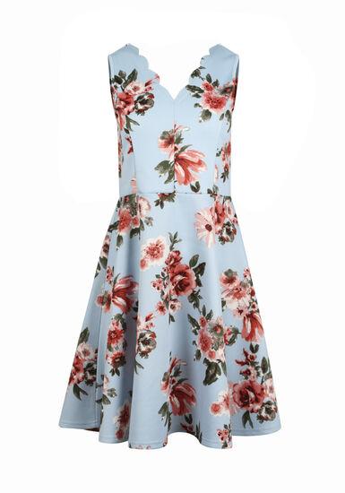 Women's Rose Floral Fit & Flare Dress, BLUE, hi-res