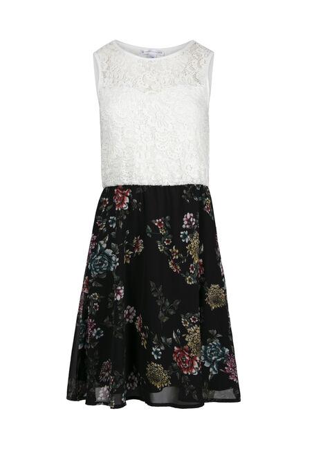 Women's Lace Floral Skater Dress