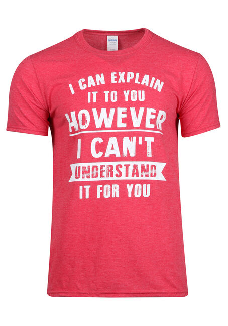 Men's I Can Explain It To You Tee