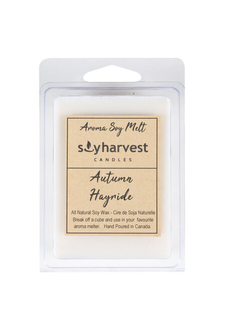 Autumn Hayride Wax Melts