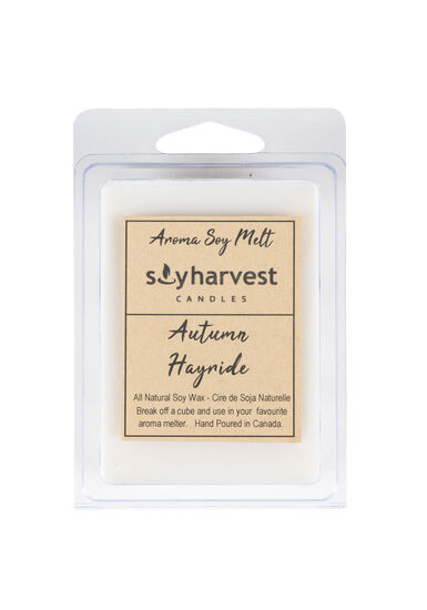 Autumn Hayride Wax Melts, WINTER WHITE, hi-res